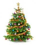 Feliz Navidad !  Happy Christmas !