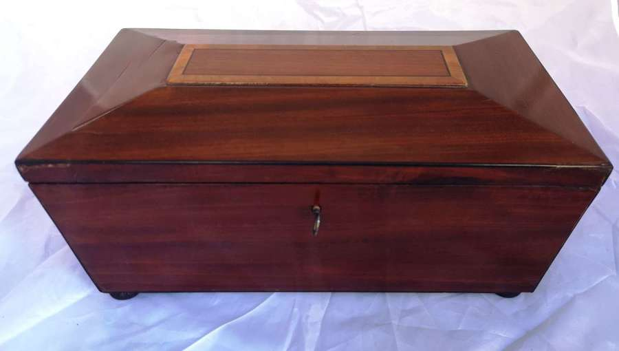 Antigua caja de palosanto, ingles siglo XIX